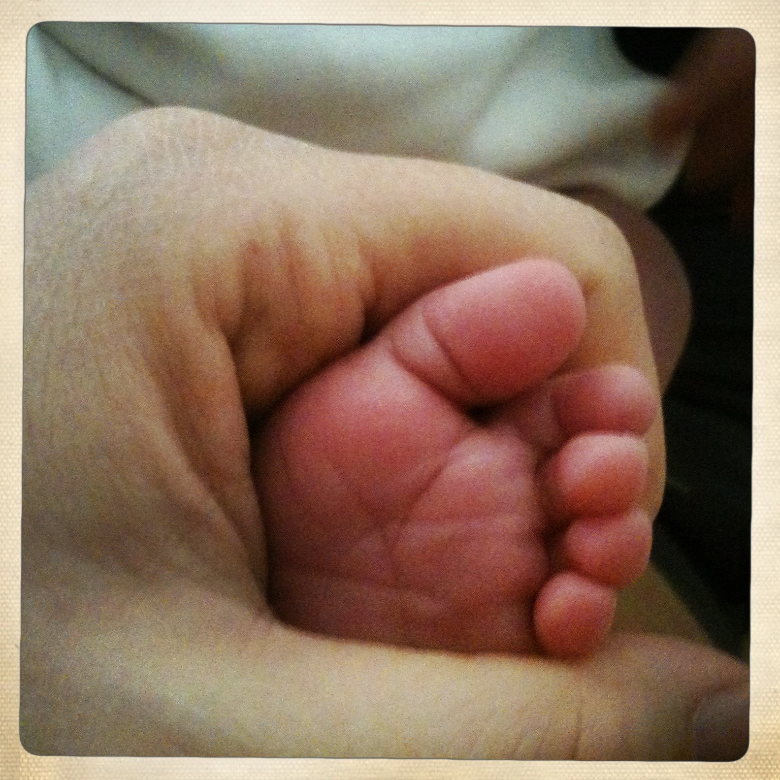 Newborn toes // 7 questions to ask for a peaceful birth